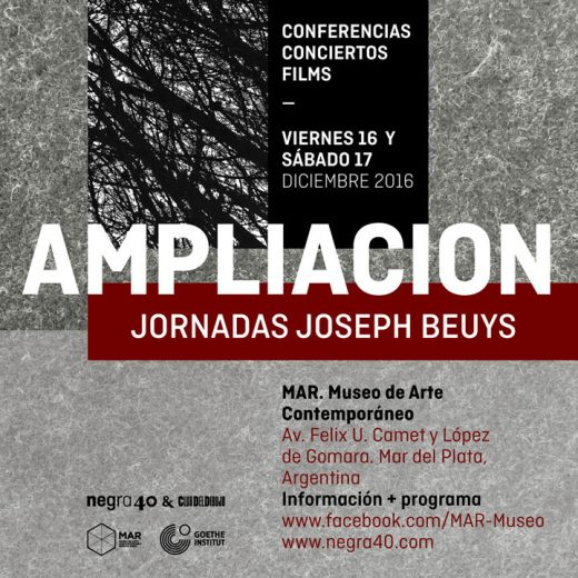 ampliacion-beuys-2016-01-portadaweb