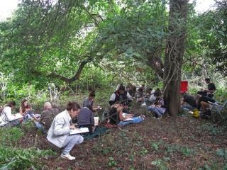 cdd-acampante-13w